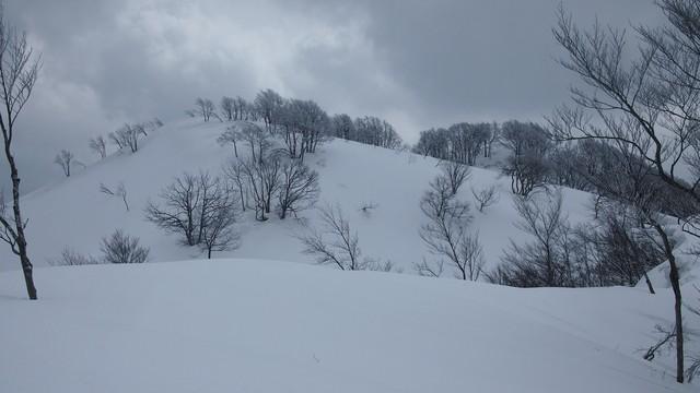 2021.2.26金鉢山から松平山.jpg12.jpg