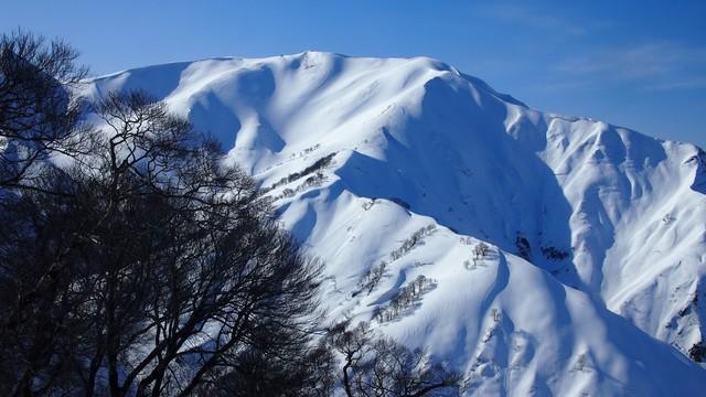 2021.3.4枯松山からの杁差岳と入り平尾根.jpg